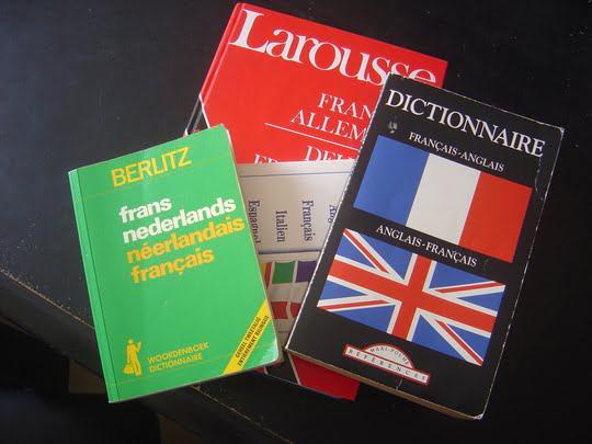Même pas la peine de trimbaler un dico, y veulent rien savoir.Source: http://www.econostrum.info/Selon-Eurostat-les-Europeens-du-Sud-sont-nuls-en-langues-etrangeres_a1586.html
