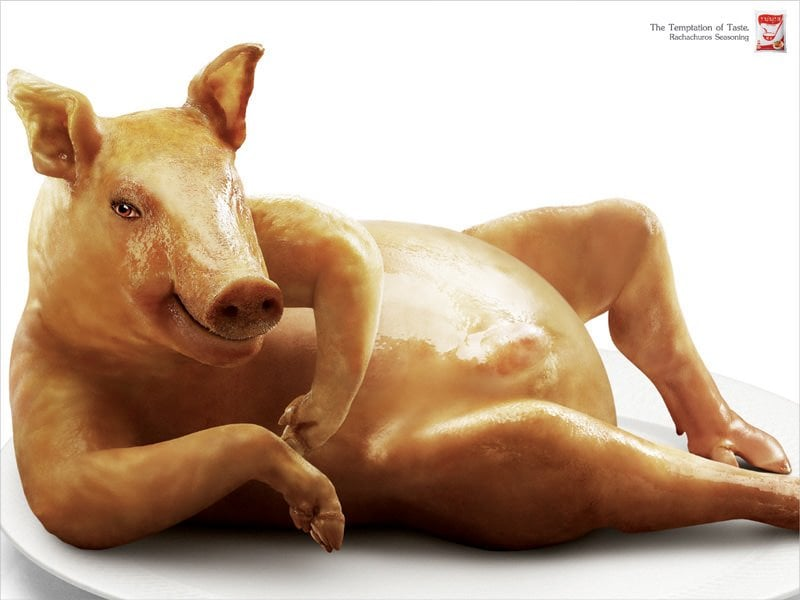 sexy-swine