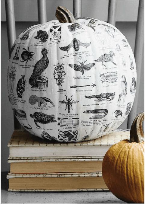 textbook-decoupage-pumpkin