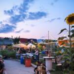Les Jardineries : une oasis de paix en ville!