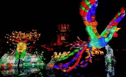 jardins de lumières jardin botanique